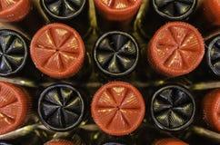 Rouge et noircissez 12 coquilles de mesure Image libre de droits