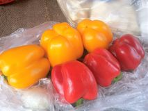 Rouge et piments colorés par jaune Photos stock