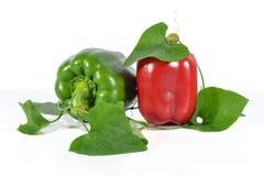 Rouge et poivrons verts Images stock
