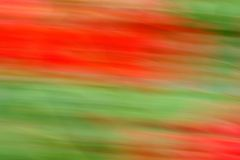 Rouge et vert dans le mouvement Images stock