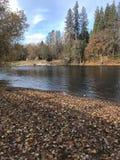 Rouge-Fluss in der schattigen Bucht, Orgeon stockfotos