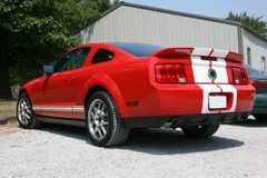 2007 rouge Ford Mustang Cobra image libre de droits