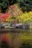 Rouge river in autumn. Colorful section of the Rouge river with a reflection of color stock photos