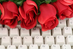 Rouge rose et clavier Images stock