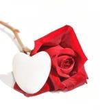 Rouge rose et coeur Photos libres de droits