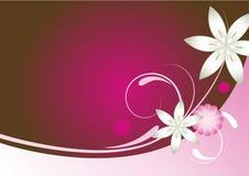 rouge-rose floral de brun abstrait de fond Photographie stock libre de droits