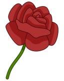 Rouge Rose Flower Icon de bande dessinée Photographie stock
