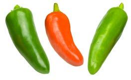 rouge vert de s/poivron Photo libre de droits