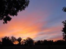 Rougeoyant lever de soleil rose, de bleu et d'or avec la silhouette d'arbres images libres de droits