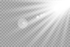 Rougeoyer blanc léger éclate sur un fond transparent Particules de poussière magiques de scintillement Étoile lumineuse illustration de vecteur