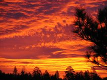 Rougeoyer de lever de soleil Image libre de droits