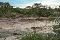 Rough African river Royalty Free Stock Photo