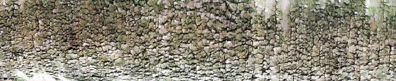 Rough Bark Banner Stock Image