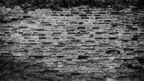 Rough brick wall. Old overgrown rough brick wall in the factory Royalty Free Stock Photos