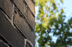 Rough brick wall. Painted in black with painting seams in white. Abstract summer blur background Stock Photography