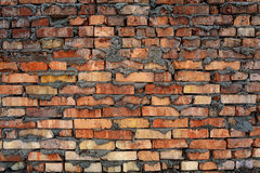 Rough brick wall Stock Image