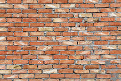 Rough brown brick wall background texture Royalty Free Stock Photos