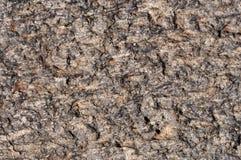 Rough brown stone texture Stock Photos
