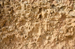 Rough cliff wall texture. Close up detail of a rough cliff wall Stock Photos
