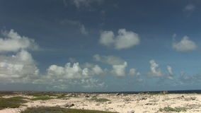 Rough coast on Bonaire stock video footage