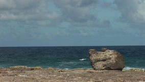 Rough coast on Bonaire stock footage