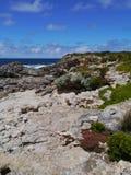 Rough coast with some vegetation Stock Photo