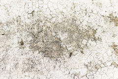 Rough and cracked cement floor texture Stock Photography