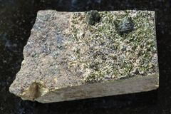rough crystals of Epidote on rock on dark Stock Photography