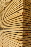 Rough cut lumber Royalty Free Stock Photos