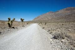 Rough Death Valley Road Stock Photos