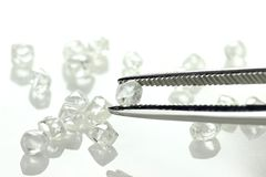 Rough diamonds. Held by tweezers on white background royalty free stock photo
