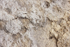 Rough dirty surface texture. Old rough dirty surface texture and background Stock Photography