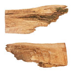 Rough driftwood directional signs. Rough hewn wood signs pointing left and right Stock Photos