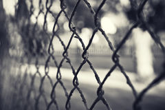 Rough Fence Stock Photography