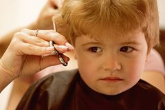 Rough fringe cut. Little child given haircut. Small child in hairdressing salon. Little boy with blond hair at. Hairdresser. Cute boys hairstyle. Hair salon for royalty free stock photos