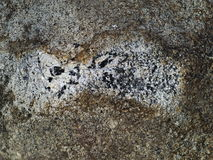 Rough and grainy concrete surface with stains Royalty Free Stock Image