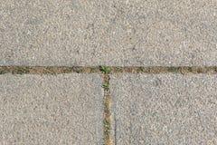 Rough granite blocks with grass. Background stock image