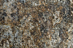 Rough granite stone surface Stock Photos