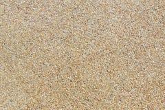 Rough gravel floor Royalty Free Stock Image
