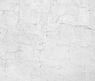 Rough gray cement wall Stock Image