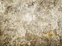 Rough grey wall Stock Image