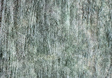 Rough grunge concrete wall Stock Image