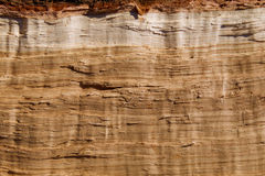 Rough Hewn Oak. The rough cut oak log is split and shows in the bright afternoon sun Royalty Free Stock Images