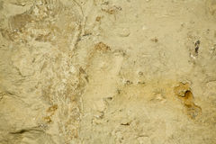 Rough Limestone Background/Texture Royalty Free Stock Images