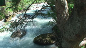 The rough mountain river with pure water stock video