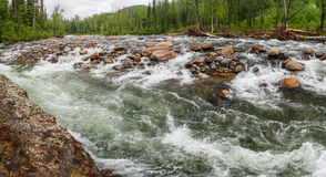 Rough Mountain River in Siberia. Stock Image