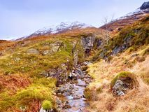 The rough mountain stream in the mountains. Snowy cone of mountain in clouds. Dry grass and heather bushes on banks Stock Photography