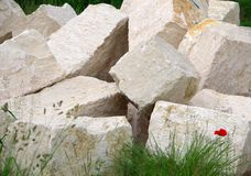 Rough natural stone blocks from jurassic lime for garden wall. Tipped stone blocks for garden design, lonely red poppy in front of the yellow natural stone royalty free stock image