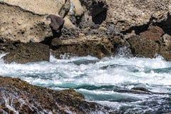 Rough ocean water around reef stock photography