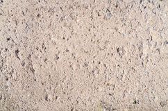 Rough old concrete texture. In sunlight Royalty Free Stock Photography